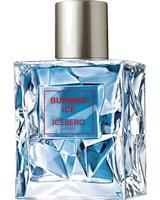 Iceberg - Burning Ice