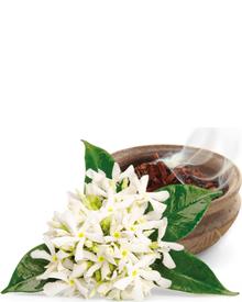 Artdeco Anti-Stress Massage Oil. Фото 1
