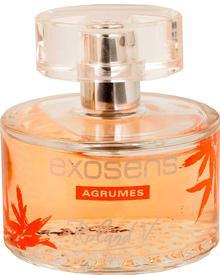 Roland V. Paris - Exosens Agrumes