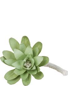 Durance - Refill Scented Flower Fleur d Eau