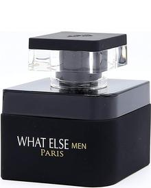 Prestige Parfums - What Else Men