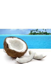Roland V. Paris Exosens Coconut Coco. Фото 3