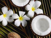 Парфюмы с ароматом кокоса - так пахнет тропическое лето!