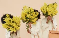 Весняний настрій: 7 самих красивих ароматів з нотою мімози.