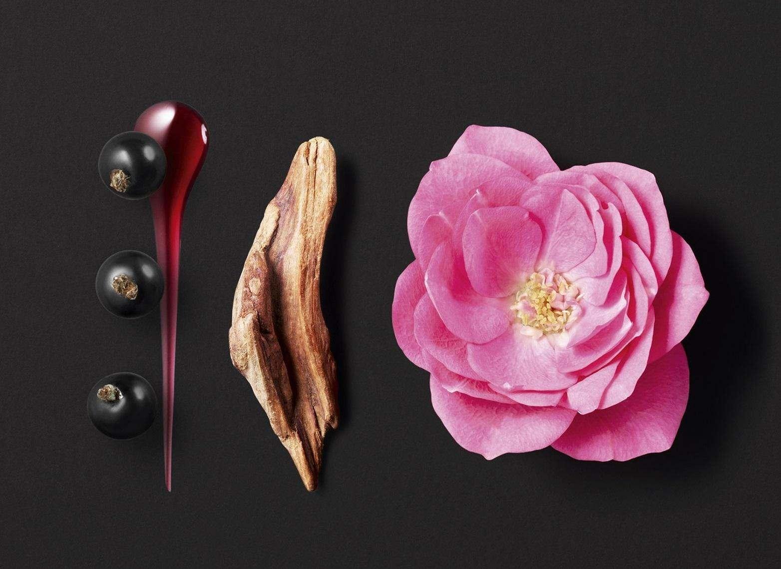 Вишукана досконалість: топ-7 шипрових ароматів для жінок.