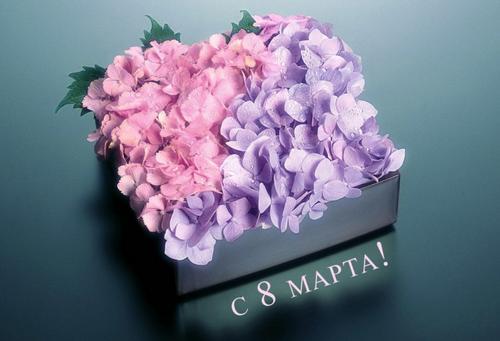 Поздравляем с праздником весны, с 8 марта!