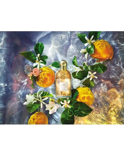 Guerlain Aqua Allegoria Orange Soleia. Фото 1