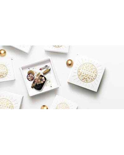 Guerlain Пудра для золотого сяйва з перламутровим ефектом Goldenland Terracotta Bronzing Powder. Фото 1