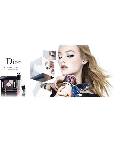 Dior Dior Addict Fluid Shadow. Фото 1
