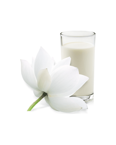 Artdeco Nourishing Foot Cream. Фото 1