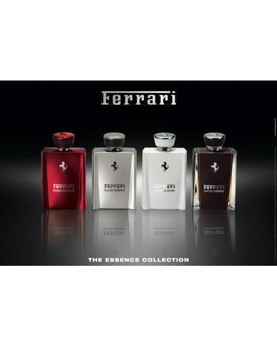 Ferrari Silver Essence. Фото 4
