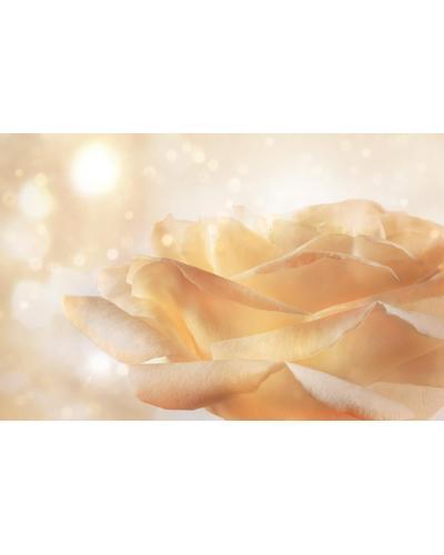 Dior J`Adore Voile de Parfum. Фото 2