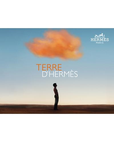 Hermes Terre d`Hermes Parfum. Фото 1