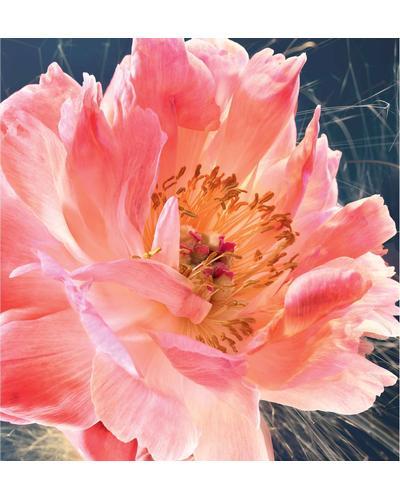 Dior Joy by Dior Eau de Parfum Intense. Фото 2
