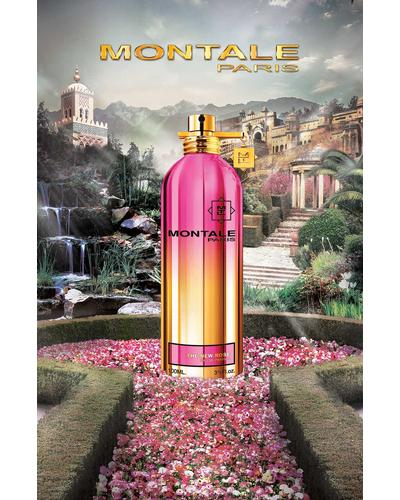 Montale The New Rose. Фото 1