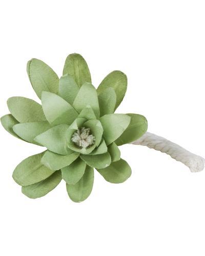 Durance Refill Scented Flower Fleur d Eau