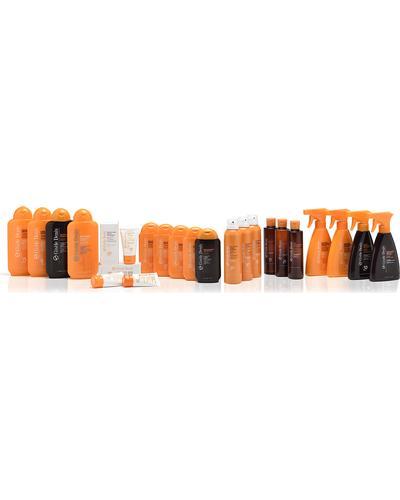 Gisele Denis Aceite Bronceador en Spray. Фото 1