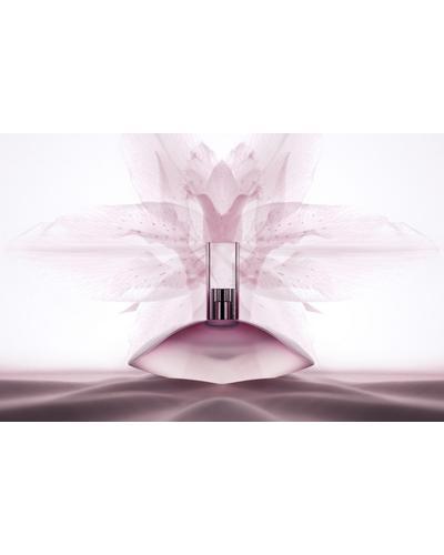 Calvin Klein Euphoria Eau De Toilette. Фото 3