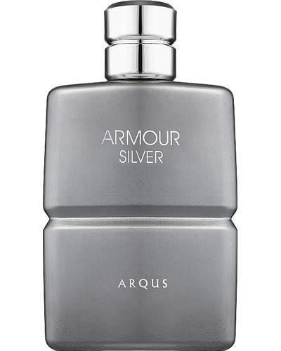 Arqus Armour Silver главное фото