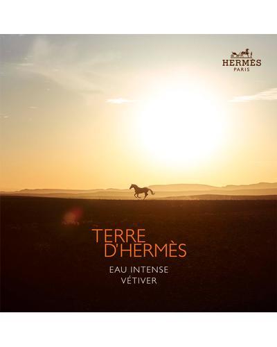 Hermes Terre D'Hermes Eau Intense Vetiver. Фото 6