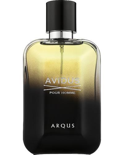 Arqus Avidus