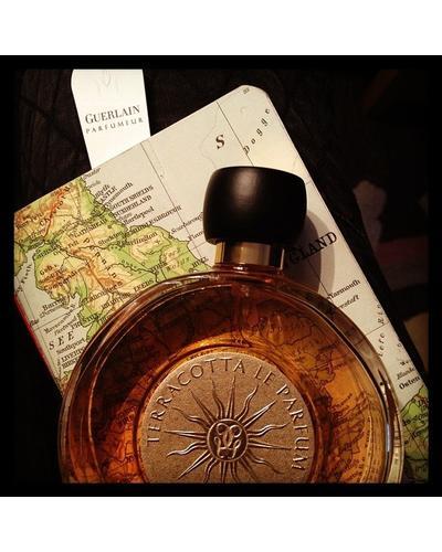 Guerlain Terracotta Le Parfum. Фото 4