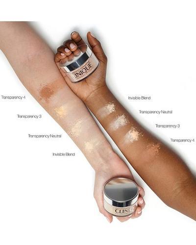 Clinique Рассыпчатая пудра для лица с кисточкой Blended Powder and Brush. Фото 1
