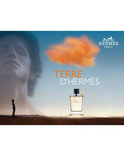 Hermes Terre d`Hermes Parfum. Фото 2