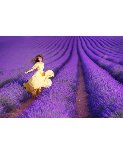 Roland V. Paris Exosens Lavender. Фото 3