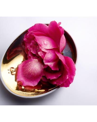 Lancome Восстанавливающая маска с экстрактом розы Absolue Precious Cells Rose Mask. Фото 2